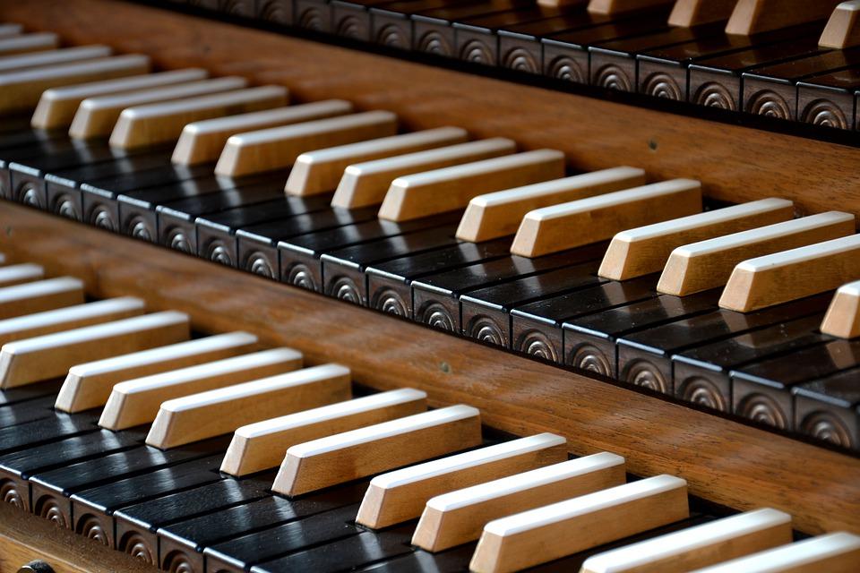 Organo