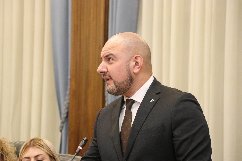 Carlo Marzi Stella Alpina