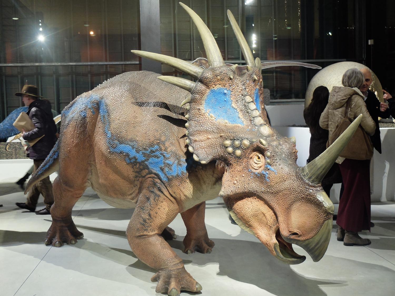 dinosauri in carne e ossaF