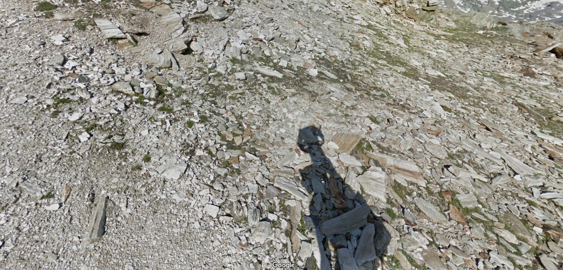 Il Trekker di Google
