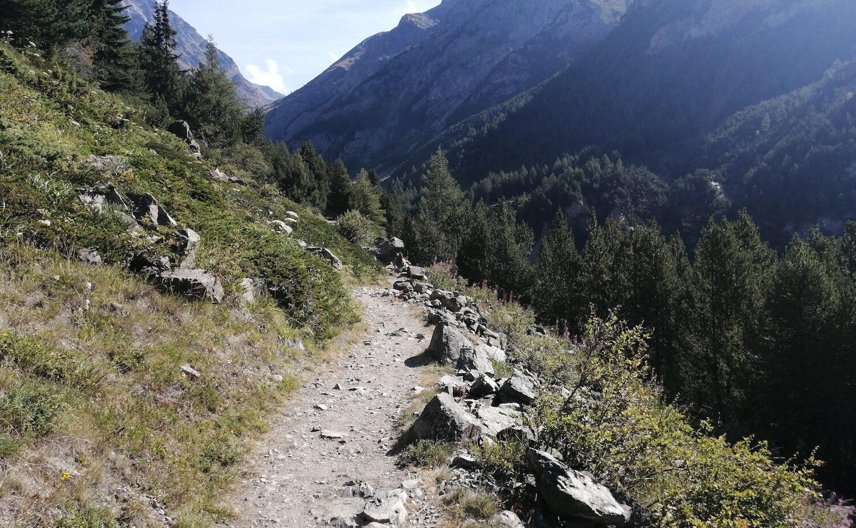 Camminata al Rifugio Grauson