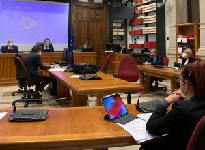 La deputata Tripodi in Commissione Affari costituzionali della camera